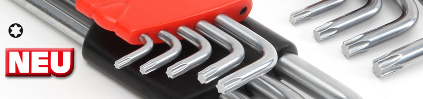 Banner Stiftschlüssel Torx